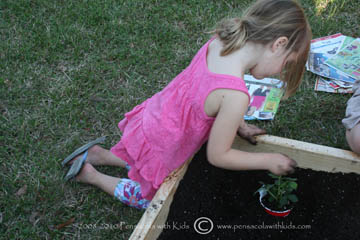 Planting a Garden (when you have never planted one before!)
